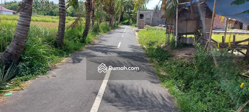 Tanah kontrakan view sawah di ubud bali #105589610