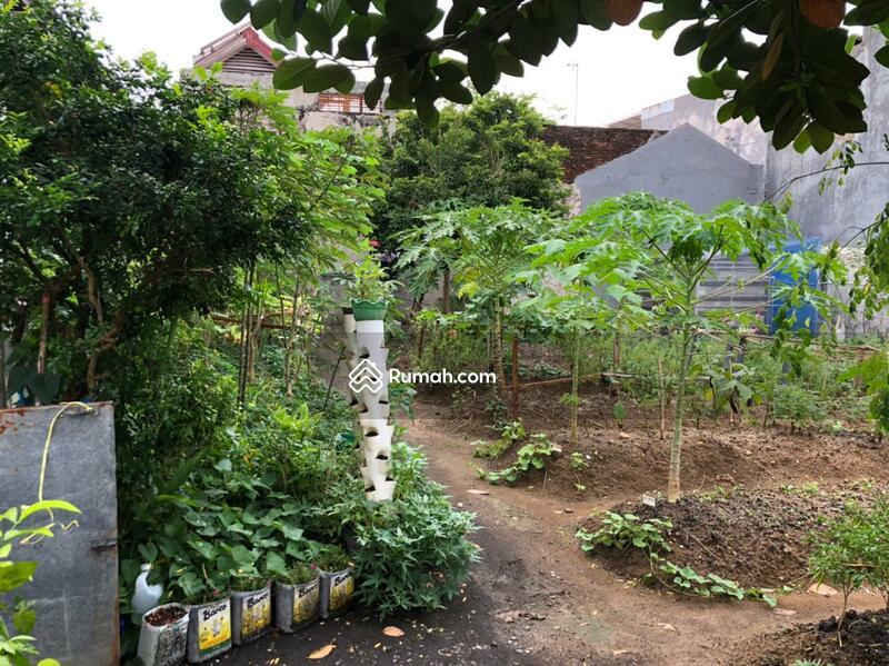 Dijual Tanah Rungkut Asri Surabaya dkt purimas wiguna wonorejo #106413218