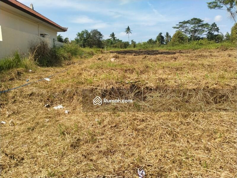 Tanah strategis pinggir jalan area lodtunduh, UBUD #106543448