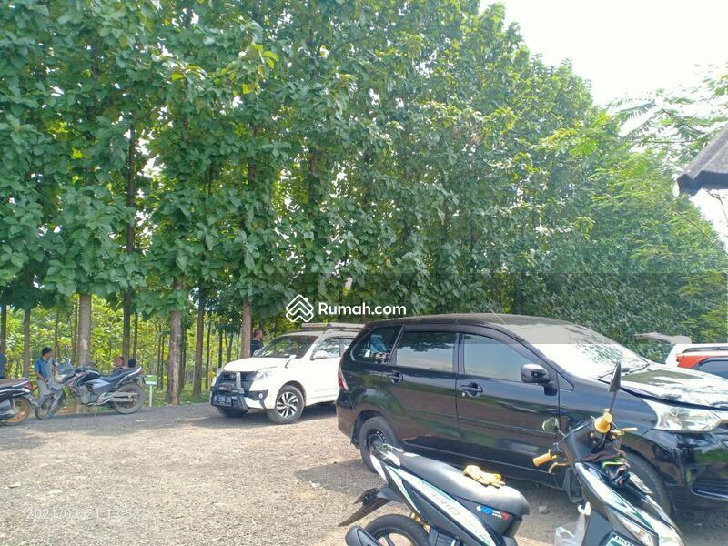 Tanah Kavling 48 Juta di Bogor Timur, View Pegunungan & Jati, Cocok Untuk Villa & Kebun #106635244