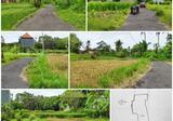 BUC Dijual Tanah murah meriah harga 90 jtaare di daerah Blahbatuh, Gianyar.