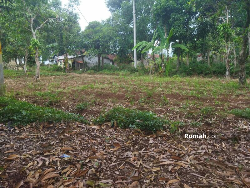 Tanah Kavling Rumah Di Ciparay #109215536