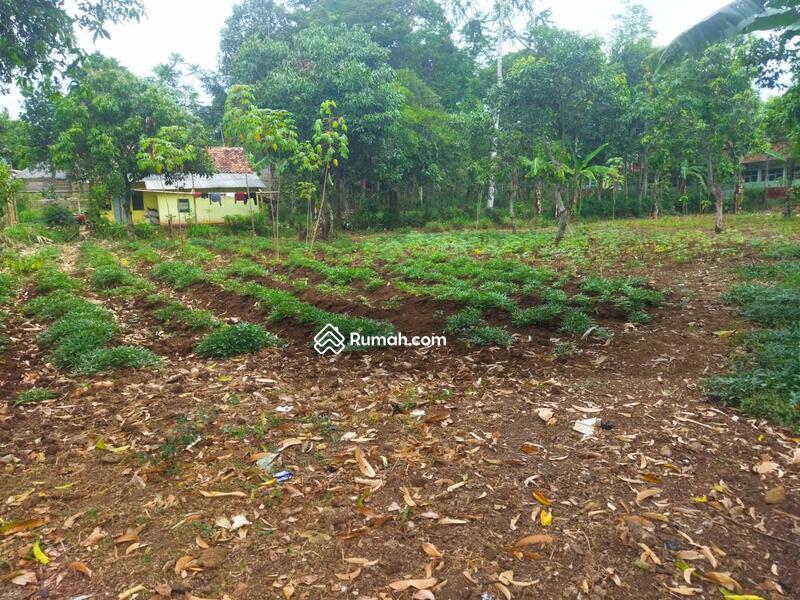 Tanah Kavling Rumah Di Ciparay #109215542