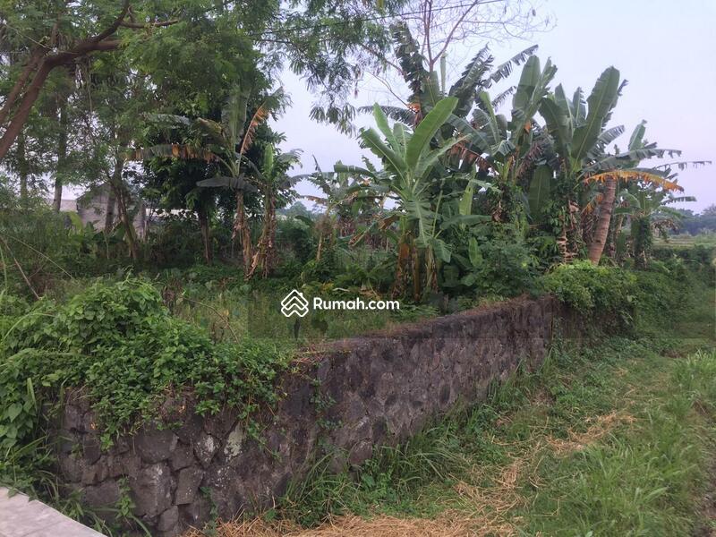 Tanah Pekarangan Murah Pinggir Jalan Raya Utara Jejamuran Sleman #108765936
