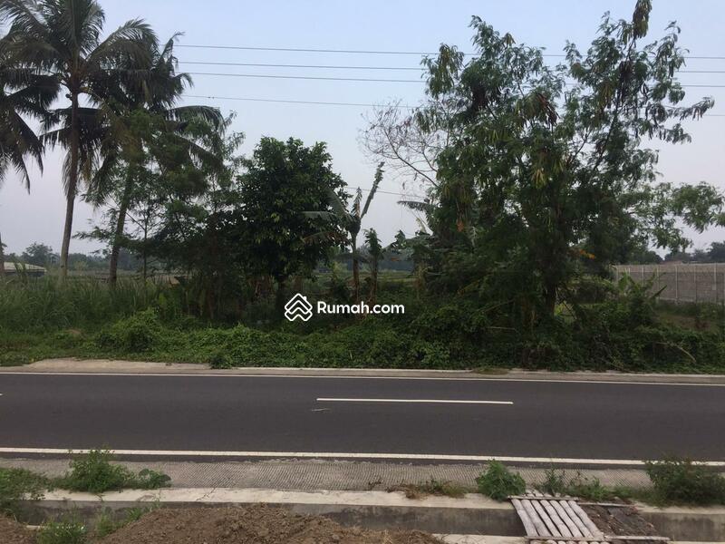 Tanah Pekarangan Murah Pinggir Jalan Raya Utara Jejamuran Sleman #108765940