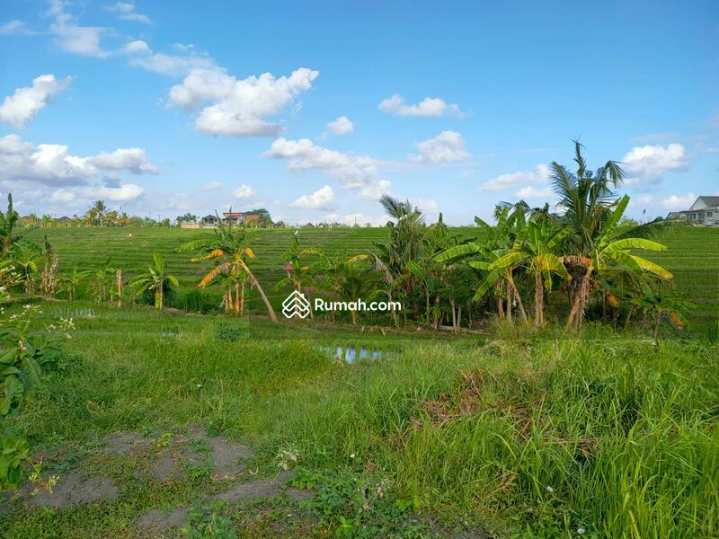 Land cemagi beach 600sqm #109099122