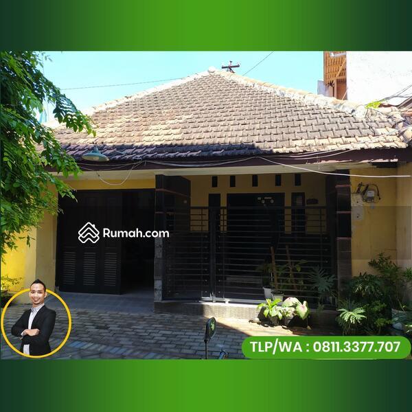Rumah Kampung Kota Sidoarjo Kauman Nuri Cocok Untuk Buka Usaha atau Kos Kosan Tengah Kota  Sidoarjo #109389664
