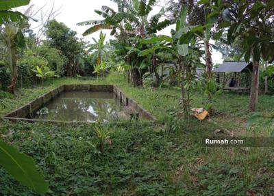 Dijual - Tanah Rumah dan Peternakan Ikan