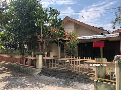 Disewa - Rumah Murah Cocok Hunian & Kantor Jln Kaliurang km 4 dkt UGM UNY