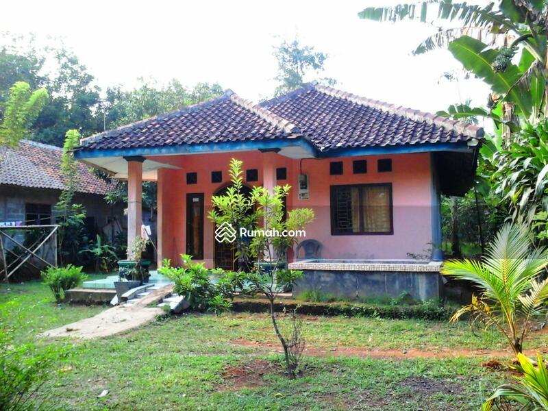 Denah Rumah Kampung 3 Kamar 2017 Foto Desain Gambar Lukisan